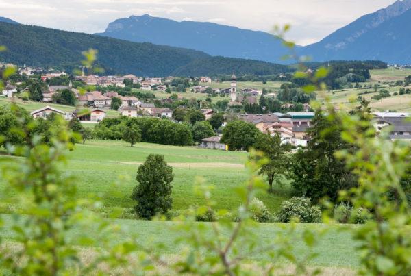 Blumenhotel Belsoggiorno - Photogallery Trentino